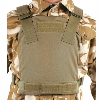 Low Vis Plate Carrier